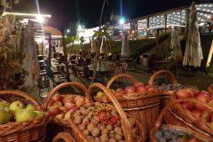 Casa-Timis-Ziua-Vinului-Gastronomiei39-scaled