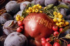 Casa-Timis-Ziua-Vinului-Gastronomiei41
