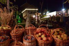 Casa-Timis-Ziua-Vinului-Gastronomiei43-scaled