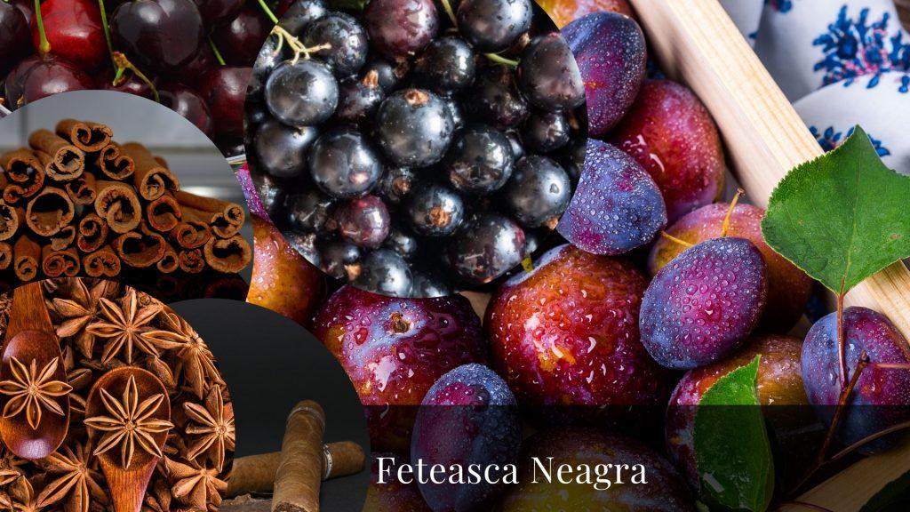 feteasca neagra struguri romanesti romanian grape varieties