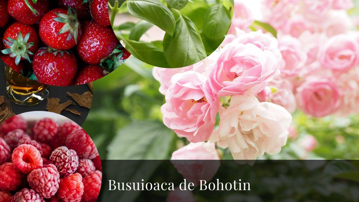 Busuioaca de Bohotin- Trandafiri și busuioc într-un pahar