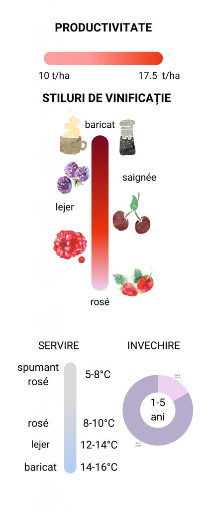 Babeasca neagra structura arome