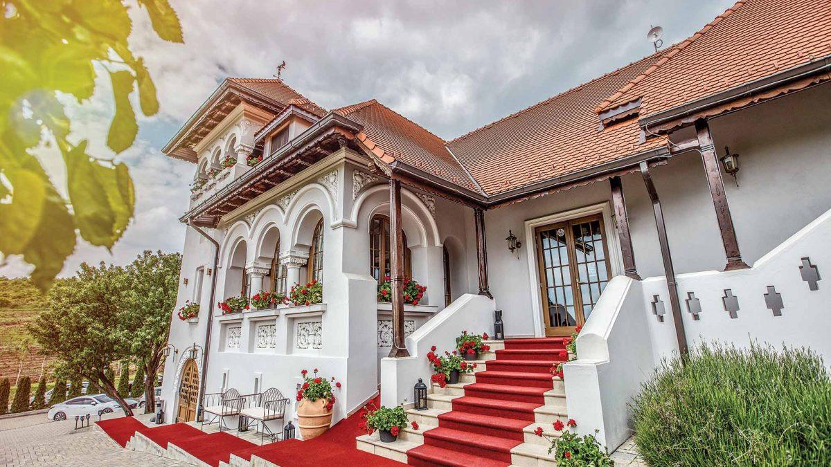 Casa Timiș- Gazda Perfectă pentru Ziua Națională a Gastronomiei și Vinului Românesc
